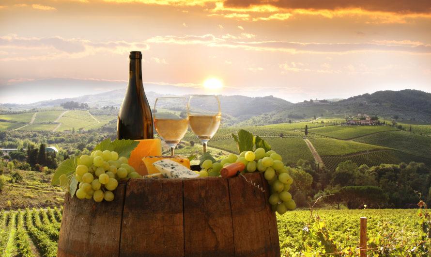 ТОП стран для посещения любителей вина