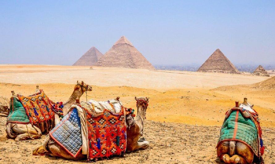 Египет — весна, пора надежд