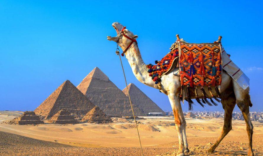Египет готов к рекорду по приему туристов из России