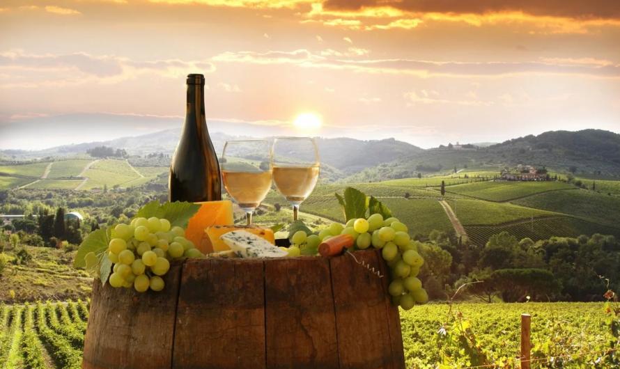 Гастротуры — за вином в Италию
